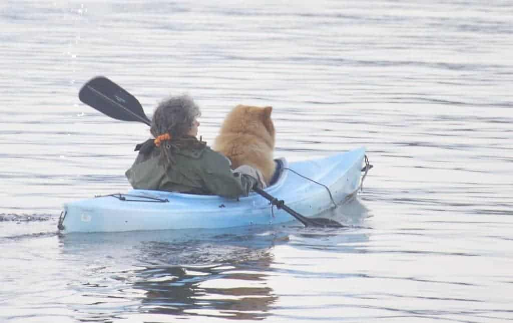 Kayaking with Dogs