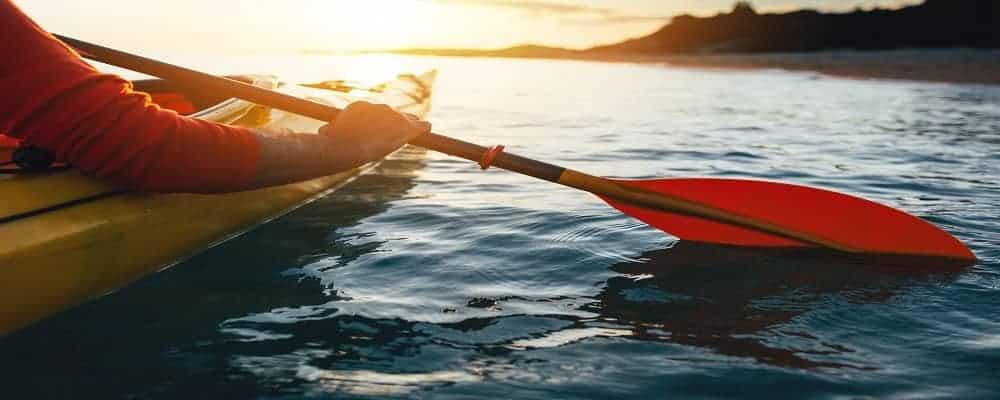 holding kayak paddles